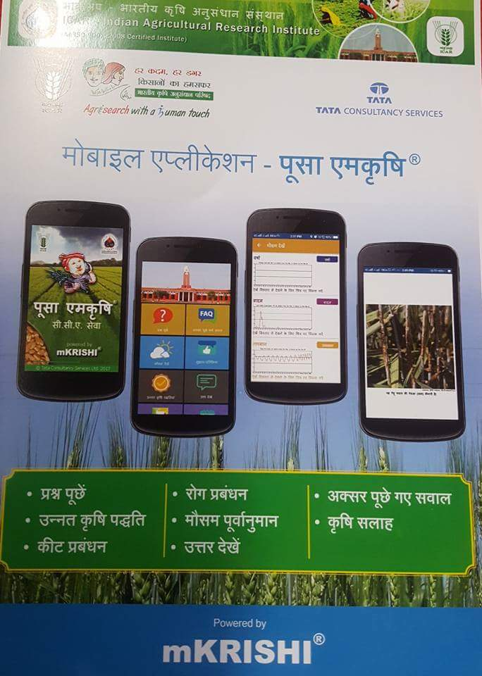 Launching Mobile App