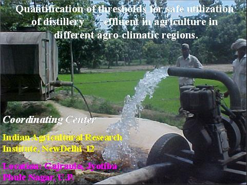 Quantification of threshold for safe utilization of distilerry effluent in agriculture in different agro-climate regions
