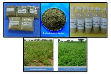 TRICHODERMA PRODUCTION TECHNOLOGY