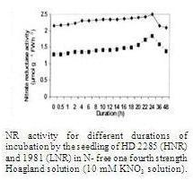 Low Nitrate Reductase (LNR)