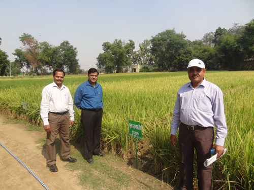 Joint Director (Extension) visiting Crop Cafeteria
