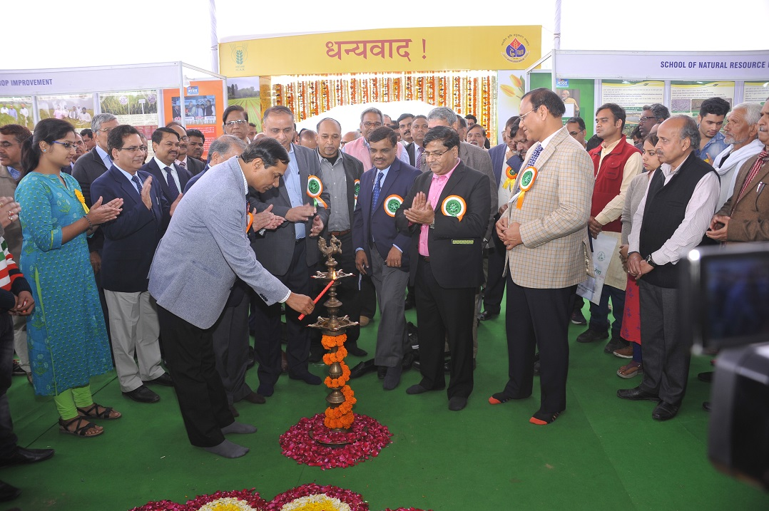 Secretary DARE & DG ICAR and other dignitaries lighting the lamp