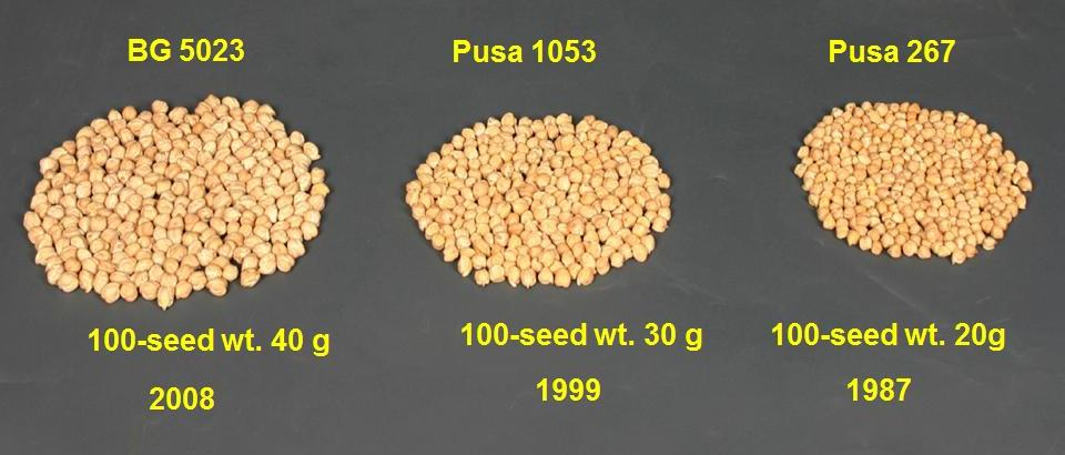 Improved varieties of chickpea, pigeon pea and mungbean developed by IARI